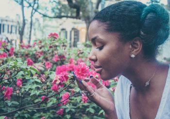 Les jeux olfactifs vont-ils remplacer le loto traditionnel?