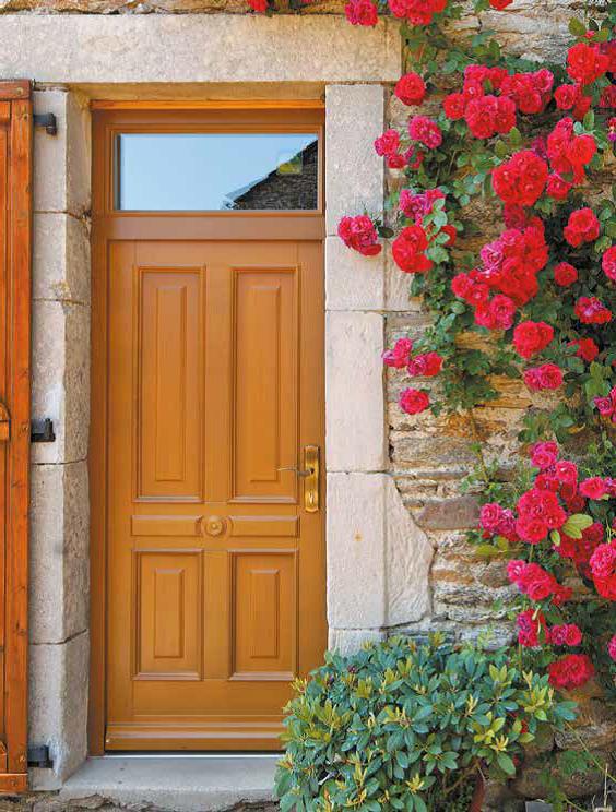 Choisissez votre porte d'entrée suisse Tryba, ses poignées, sa couleur…!